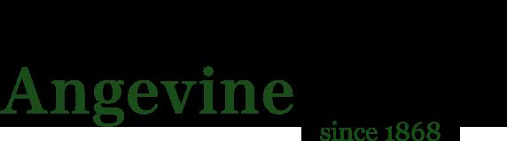 angevine logo new font