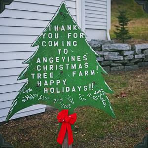 Open For Tree Cutting & Christmas Barn Gift Shop
