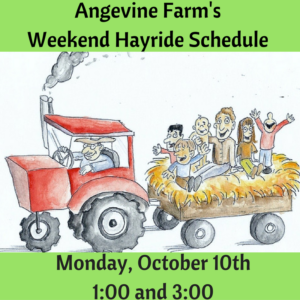 Warren Day @ Angevine Farm