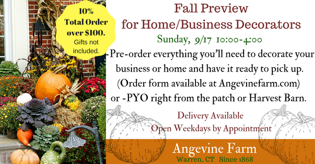 Fall Preview 1