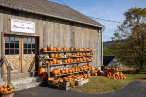 PYO Pumpkins & Harvest Barn Gift Shop