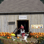 Pumpkins Outside the Harvest Barn