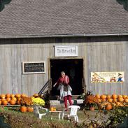 Pumpkins Outside the Harvest Barn